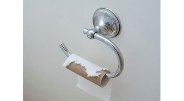 Cultura Pregunta Trivia: ¿Quién popularizó el uso del papel higiénico?
