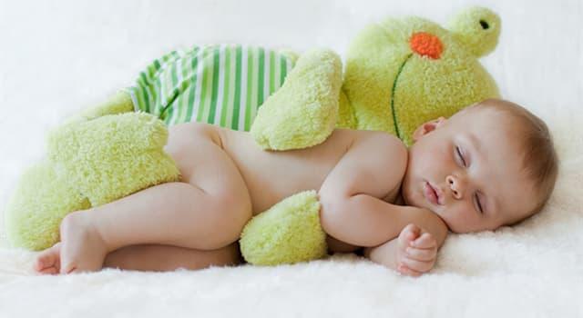 Природа Вопрос: Сколько костей у новорожденного человека?