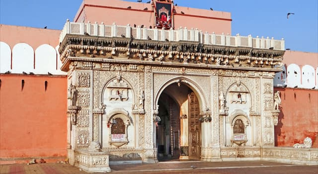 Culture Trivia Question: What is the Karni Mata Temple famous for?