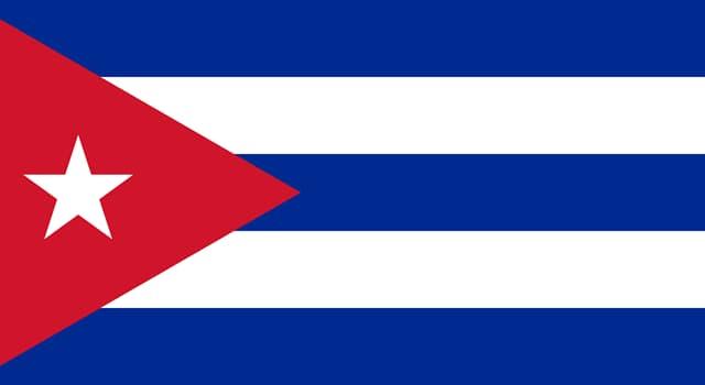 Культура Вопрос: Флаг какого государства изображён на фото?