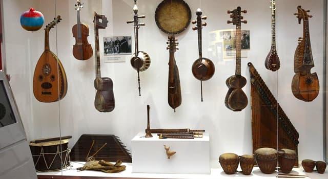 Культура Вопрос: К какой группе музыкальных инструментов относится лютня?