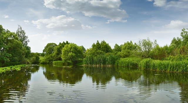 """Natur Wissensfrage: Gibt es in Wirklichkeit einen """"kochenden"""" Fluss?"""