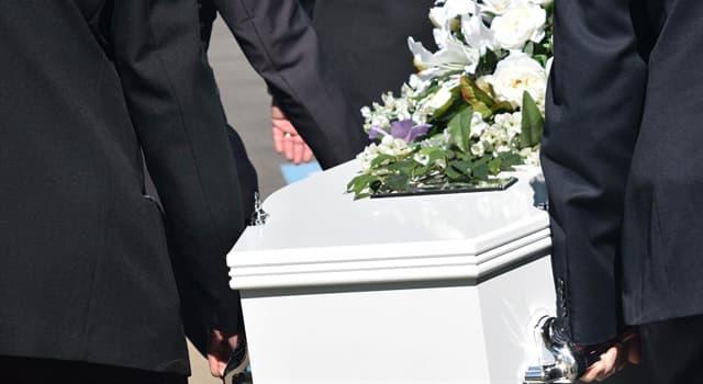 Wissenschaft Wissensfrage: Welcher Begriff steht dafür, wenn man seinen eigenen Tod vortäuscht?