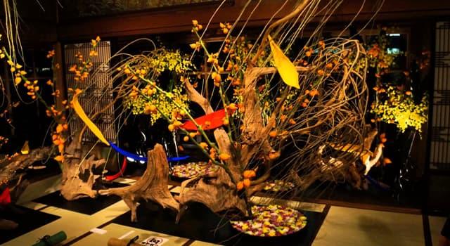 Kultur Wissensfrage: Wie heißt die traditionelle japanische Kunst des Blumenarrangierens?