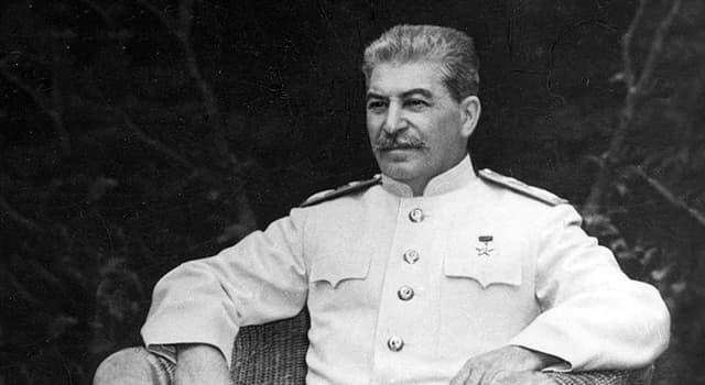 Geschichte Wissensfrage: Was war Stalins Vater Bessarion Dschugaschwili von Beruf?