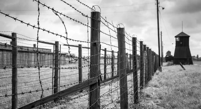 Geschichte Wissensfrage: Wo lag das KZ Arbeitsdorf?