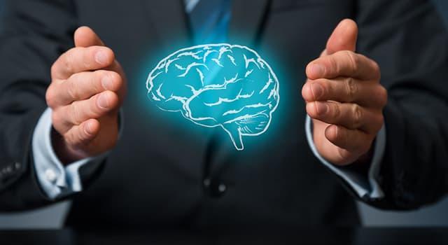 Wissenschaft Wissensfrage: Welcher dieser Begriffe bezeichnet die Unfähigkeit zu sprechen?