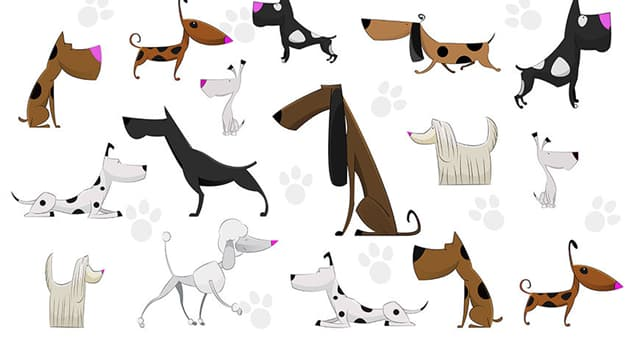 Culture Trivia Question: Which is the only dog breed mentioned by name in the Bible?
