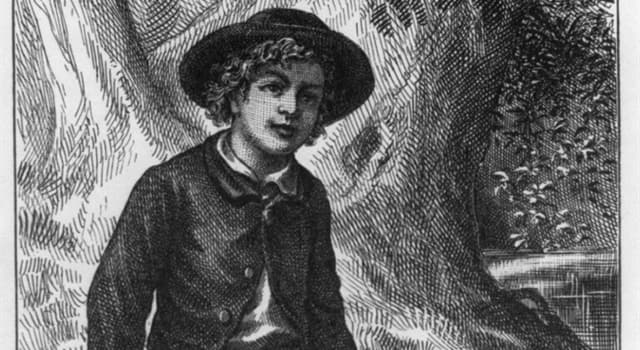 Culture Trivia Question: Who was Tom Sawyer's best friend?