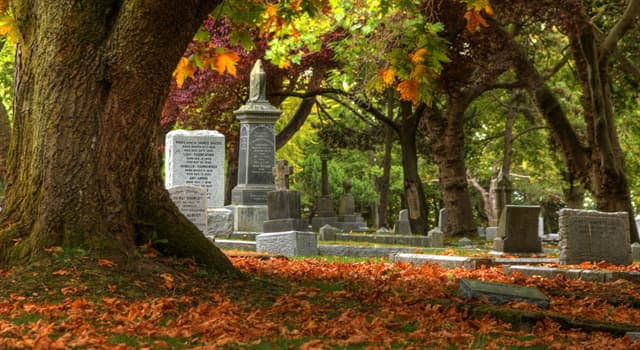 Culture Trivia Question: As of 2019, what is the largest cemetery in the world?