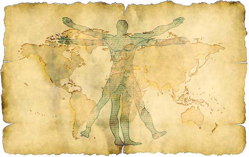 """Cultura Pregunta Trivia: ¿Cuál de las siguientes afirmaciones es la correcta, de acuerdo a las proporciones del """"Hombre de  Vitruvio""""  de Leonardo da Vinci?"""