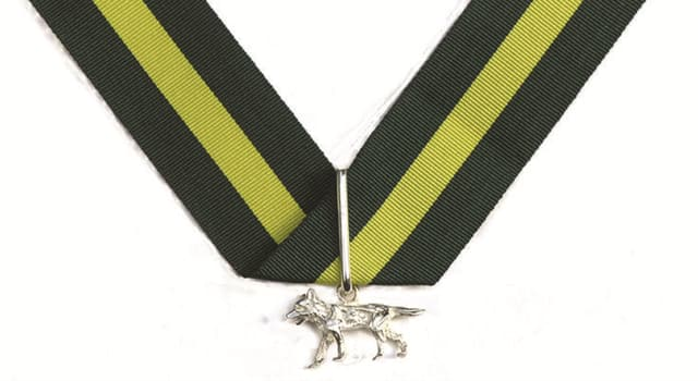 Culture Trivia Question: The Silver Wolf is the highest award in which organisation?