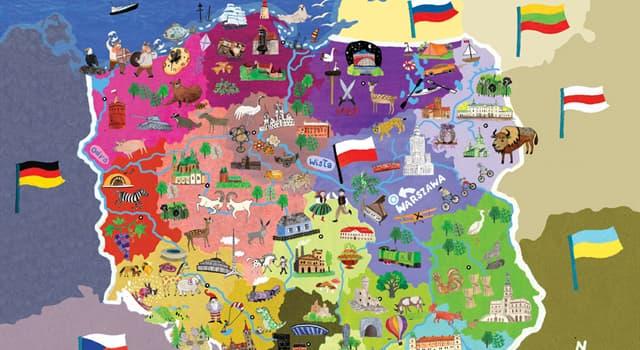 Kultur Wissensfrage: Was bekommt man, wenn man in Polen nach einem Piwo fragt?