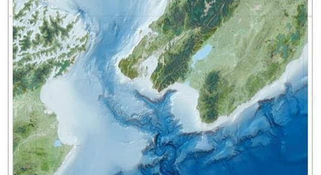 Geographie Wissensfrage: Welche Meerenge verläuft zwischen der Nordinsel und der Südinsel von Neuseeland?