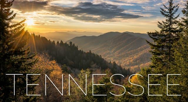 Kultur Wissensfrage: Wer wurde laut Song auf einem Berg in Tennessee geborten?
