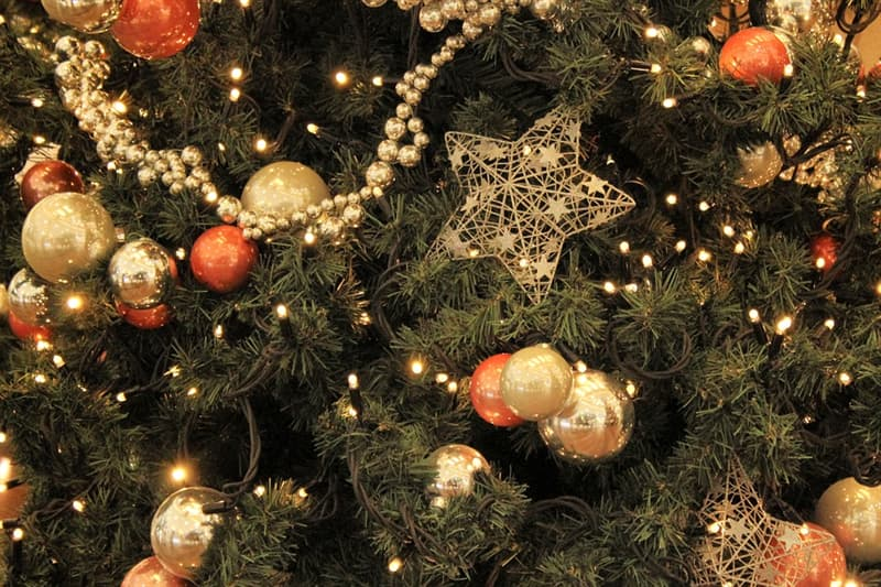 Where Did Christmas Trees Originate.What Country Did The Modern Trivia Answers Quizzclub