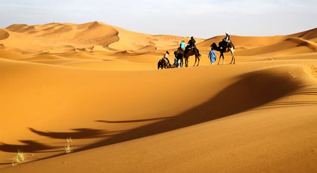 History Trivia Question: Whose son went missing in the Sahara Desert during 1982?
