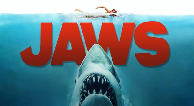 """Film & Fernsehen Wissensfrage: Wie heißt die Insel, die im Film """"Der Weiße Hai"""" von einem großen weißen Hai terrorisiert wird?"""