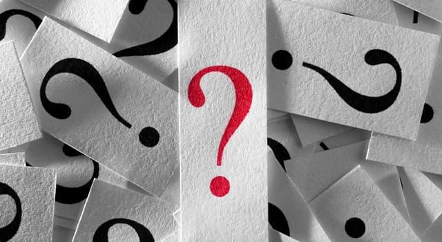 Gesellschaft Wissensfrage: Was sind Tachinide?