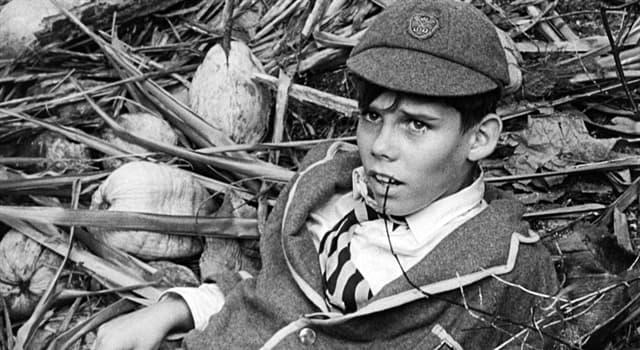 Film & Fernsehen Wissensfrage: Welcher Film handelt von einer Gruppe der Jungen, die auf einer einsamen Insel ausgesetzt sind?