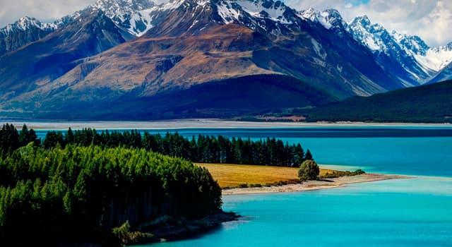 Kultur Wissensfrage: Welcher Vogel ist ein Symbol für Neuseeland?