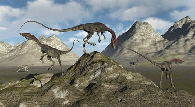 Nature Trivia Question: What did the Compsognathus eat?