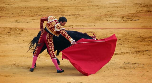 Culture Trivia Question: What is Spanish-style bullfighting usually called?