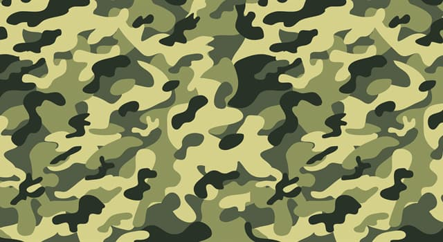 Society Trivia Question: Which of these is a military rank of the highest degree in most countries?