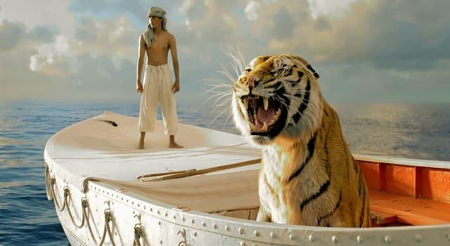 """Kultur Wissensfrage: Wie heißt der bengalische Tiger im Roman """"Schiffbruch mit Tiger"""" von Yann Martel?"""