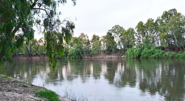 Geographie Wissensfrage: Wo befindet sich die Stadt Wagga Wagga?