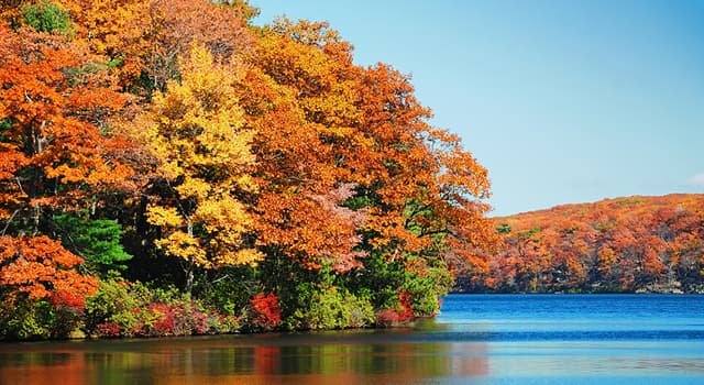 Geography Trivia Question: In which US state are the Catskill Mountains?