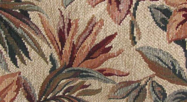 Culture Trivia Question: The fabric, Chenille, shares its name with the French for which animal?