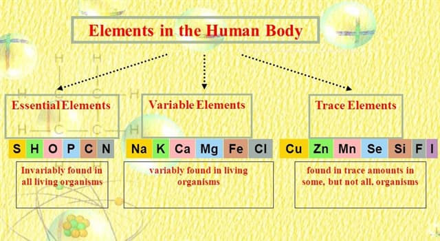 Science Trivia Question: Which element accounts for approximately 65% mass of the human body?