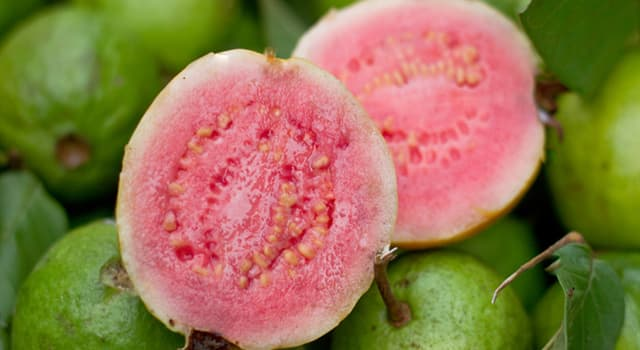 Nature Trivia Question: What fruit is pictured below?