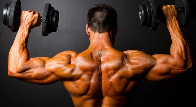 Sport Trivia Question: What is the use of resistance exercise to develop musculature for aesthetic purposes called?