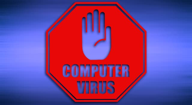 Science Trivia Question: What was the name of one of the first known microcomputer viruses written by Rich Skrenta?