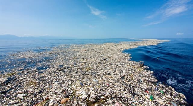 Geography Trivia Question: Where is the Great Pacific Garbage Patch located?