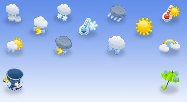 Science Trivia Question: Which branch of science focuses on weather forecasting?