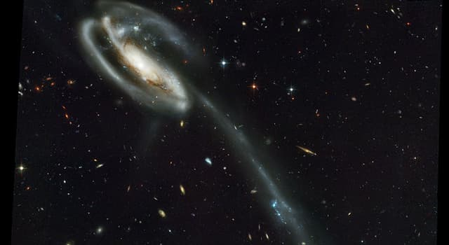 Science Trivia Question: Which galaxy is pictured below?