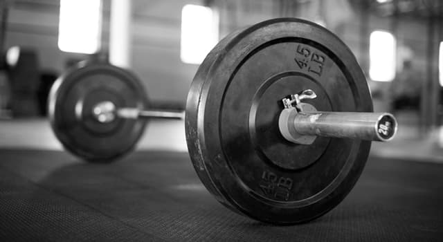 Sport Trivia Question: Which piece of exercise equipment is pictured below?