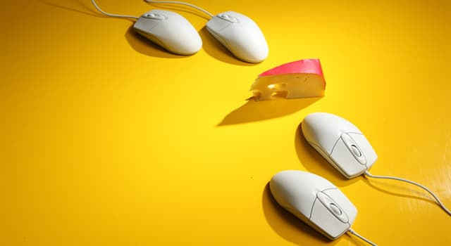 History Trivia Question: In which year did Douglas Car Engelbart receive a patent for a computer mouse?