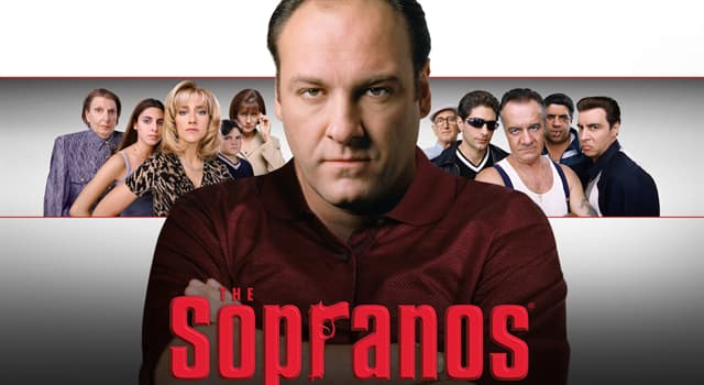 Movies & TV Trivia Question: What was the main setting of the TV series the 'Sopranos'?