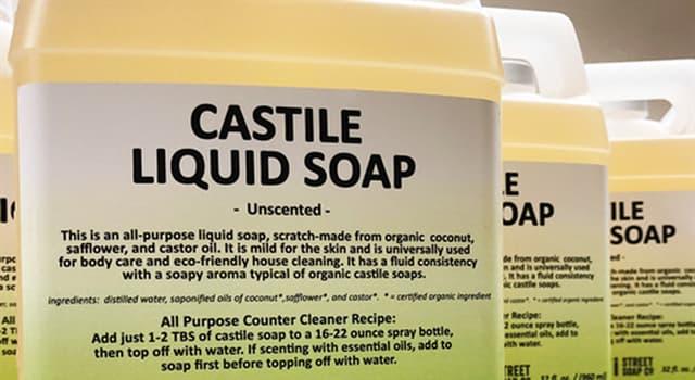 Culture Trivia Question: Where did Castile soap originate?