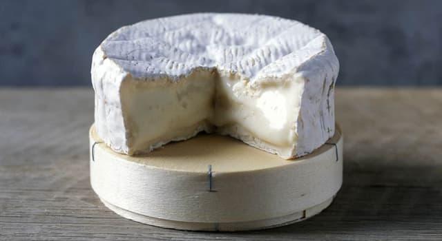 Culture Trivia Question: Where does camembert cheese originate?