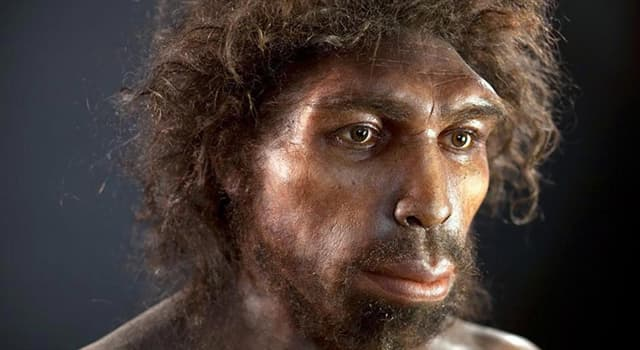 History Trivia Question: Where were Homo rhodesiensis fossils discovered?