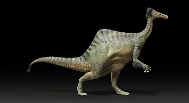 Science Trivia Question: Where were the bones of Deinocheirus first discovered?