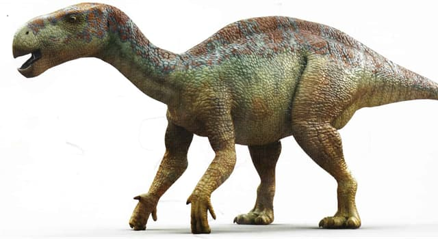 Nature Trivia Question: Which dinosaur is pictured below?