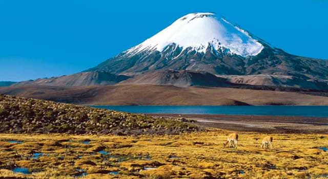 Geography Trivia Question: Which is the highest active volcano in the world?