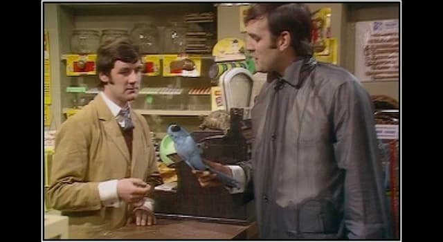 Movies & TV Trivia Question: Which two Monty Python comedians performed the infamous 'Dead Parrot' Sketch?