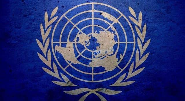 Geschichte Wissensfrage: Welcher dieser UN-Generalsekretäre diente während des 2. Weltkriegs in der deutschen Nazi-Armee?